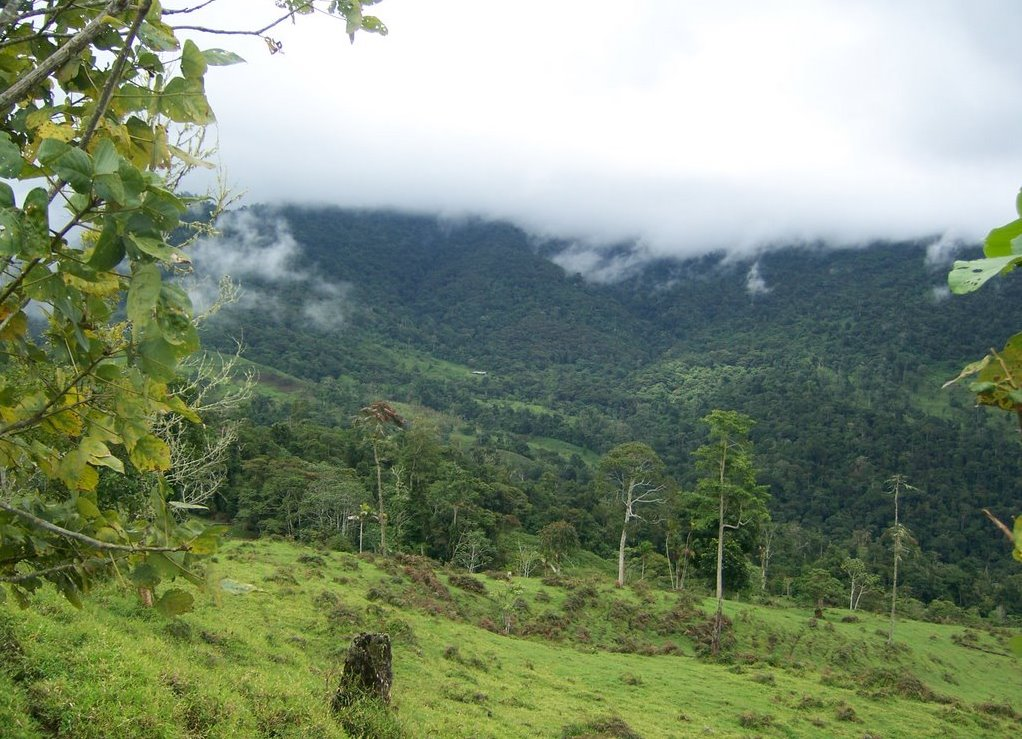 Kostarika upoznavanje života